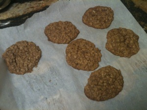 Sugar Free Oatmeal and Coconut Cookies