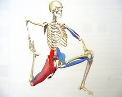 Psoas activation